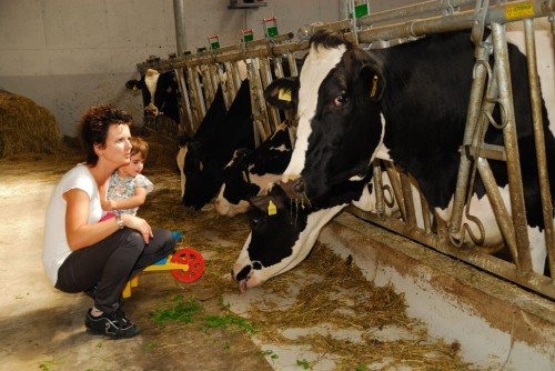 Farm holidays with animals